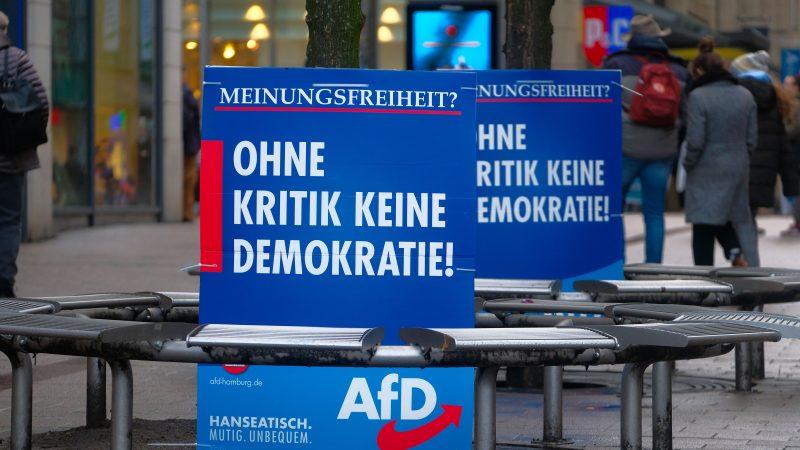 """""""Spiegel"""": Die AfD erbt das Doppelte – Nachlass von niedersächsischem Ingenieur 14,4 Millionen Euro wert"""