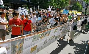Плакаты, разоблачающие преследование Фалуньгун, привлекают внимание людей. Фото: minghui.ca