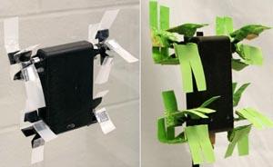 Робот Mini-Whegs 7 на вертикальной стеклянной стене: на