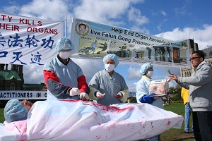 Инсценировка извлечения органов у практикующих Фалуньгун в Китае во время митинга. Фото: Ной Картье /Великая Эпоха