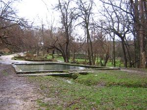 Данное фото и есть тот самый парковый бассейн усадьбы (Максимова дача), возле которого происходили расстрелы