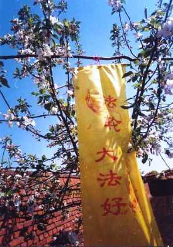 Плакат, на котором написано «Фалунь Дафа – хао» («Фалунь Дафа – хороший»), висит в одной из деревень в провинции Хэйлуньцзян. Такими простыми действиями, которые требуют большого личного мужества, последователи Фалуньгун хотят пробудить сознание китайцев относительно преступлений компартии Китая. Фото: The Epoch Times