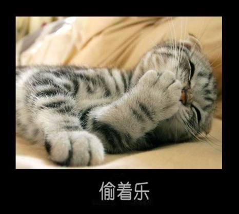 Радость.Фото с secretchina.com