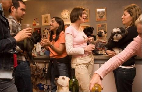 Собаки и их хозяева общаются в специальном магазинчике и кондитерской Yappy Hour! на Юнион Стрит. (Catherine Karnow)