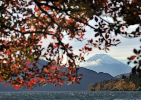 Осенняя пора в Японии. Фото: Getty Imgaes