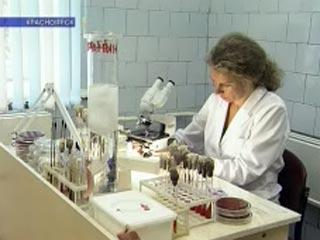 На данный момент диагноз лабораторно подтвержден у 173 человек (по данным на 22 октября в городе насчитывалось 115 больных). Таким образом, за последние сутки диагноз свиной грипп был подтвержден 58 больным. Фото с newsru.com