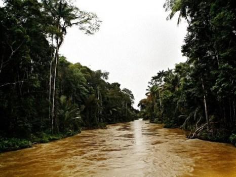 Рио Карауари, Амазония. Фото: Eduado Rizzo Guimarгes