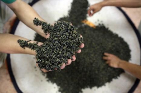 Фестиваль зелёного чая пройдёт в Корее. Фото: Paula Bronstein/Getty Images