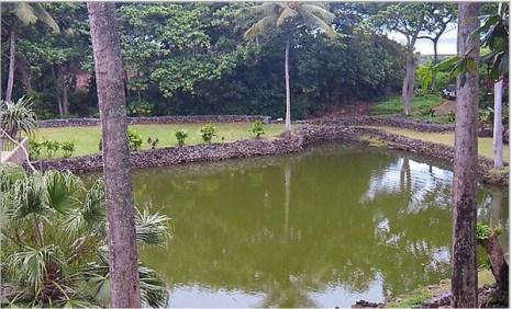 Древний уникальный водоем с пресной водой, известный на Моуи тем, что был восстановлен Джоном Ромэйном. Фото предоставлено Джоном Ромэйном.