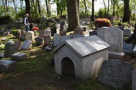 Кладбища домашних животных. Фото: John Moore/Getty Images