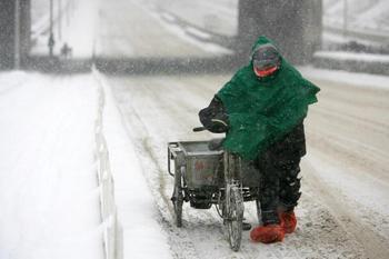 Пекин засыпало снегом. Фото: AFP