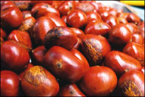 Каштаны в Китае вымачивают в сахарине и жарят в техническом масле с парафином. Фото с epochtimes.com