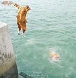 Даже монахи в Китае не выдерживают условий жизни и совершают самоубийства. Фото с epochtimes.ru