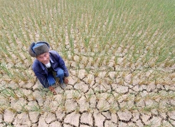 На юге Китая 3 года продолжается засуха. Фото с epochtimes.com