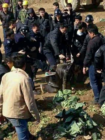 В Китае нарастает социальная напряженность. На фото полиция избивает крестьян, которые протестуют против отъёма чиновниками земли. Посёлок Лоян провинции Фуцзянь. 17 января 2014 год. Фото с epochtimes.com