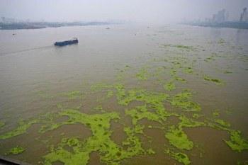 Вода в реке Янцзы загрязнена промышленными отходами. Фото с epochtimes.com