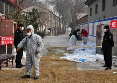 Медицинские работники на птицеферме в г. Баодин, провинция Хэбэй, где были обнаружены заражённые птичьим гриппом курицы. Всемирная организация здравоохранения предупреждает соседей Китая остерегаться вируса. Фото: STR/AFP/Getty Images