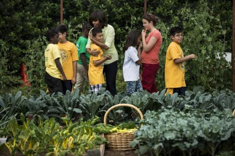 Мишель Обама собрала со школьниками первый урожай и они устроили пикник. Фото: BRENDAN SMIALOWSKI/AFP/Getty Images