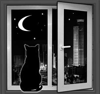 «Это тебе не телевизор какой, тут не заскучаешь...», – думает Делька, глядя в окно. Коллаж: Ольга Пентелеева/Великая Эпоха
