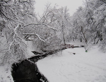 Стихи А. С. Пушкина о зиме. Фото: Николай Богатырёв