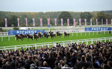 Популярные скачки прошли в Аскоте (Англия) 19 октября 2013 года. Фото: Stuart C. Wilson/Getty Images for Ascot Racecourse