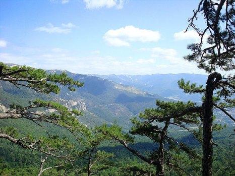 Ялтинский заповедник. Вид с горы Пендикюль, Украина. Фото: Alltre/commons.wikimedia.org