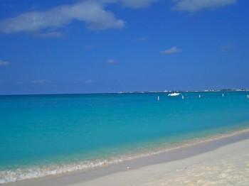 Между кулинарными изысками из ваху было время, чтобы полюбоваться белыми песчаными пляжами  Каймановых островов. Фото: Изабель Kellogg