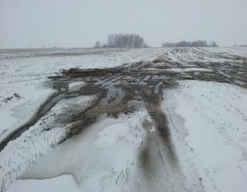 На поля Калининградской области продолжают сливать навоз. Фото предоставлено пресс-службой Общественной общероссийской организации
