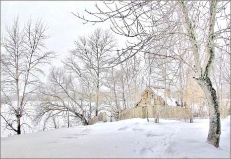Русская природа зимой. Фото с сайта yandex.ru
