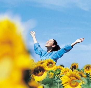 Цветок подсолнечника поворачивается вслед за движением солнца, поэтому не удивительно, что он получил такое интересное название. Фото: Michelangelo Gratton/Getty Images