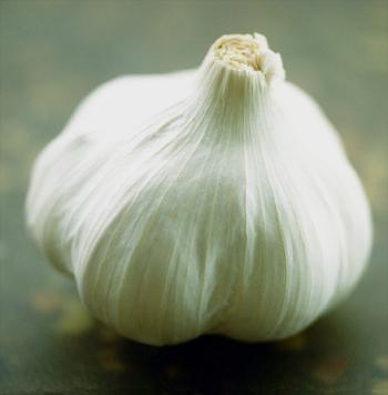 Антибактериальные эффекты чеснока известны человечеству с давних времён. Фото: Ross Land/Getty Images