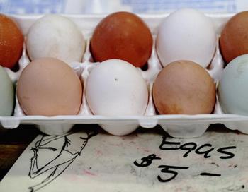 Яйца. Фото:  Wendy Maeda/The Boston Globe via Getty Images