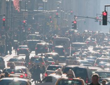Воздух больших городов ума не прибавляет. Фото: Mitchell Funk/Getty Images.