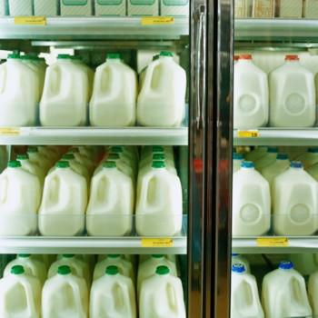 Помимо всех полезных веществ, которые мы рассчитываем получить, выпив стакан молока, к нам в организм дополнительно могут попасть около 20 химических соединений синтетического происхождения. Фото: Ryan McVay/Getty Images.