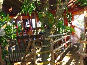 Роскошный зал среди деревьев. Фото: Жан МОРАН/Великая Эпоха/The Epoch