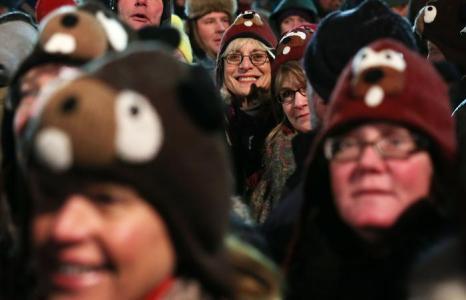 Сурок Фил из Панксатони предсказал в День сурка США раннюю весну, Пенсильвания, США, 2 февраля 2013 года. Фото: Alex Wong / Getty Images