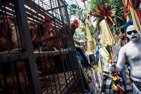 Ритуал изгнания злых духов Гребег провели жители индонезийского острова Бали 1 мая 2013 г. Фото: Putu Sayoga/Getty Images