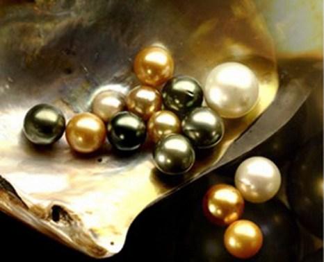 Что такое жемчуг? Фото с сайта pendulumswing.files.wordpress.com