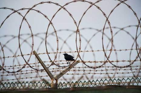 Гуантанамо (Куба). Тюрьма продолжает быть действующей спустя год после заявления Обамы об её закрытии. Фото:  PAUL J. RICHARDS/AFP/Getty Images