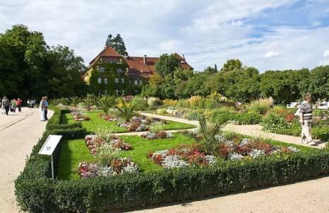 Берлинский ботанический сад. Фото с сайта animalworld.com.ua