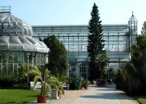 Оранжереи в стиле модерн приглашают посмотреть и удивиться. Фото: © I. Haas, Botanischer Garten und Botanisches Museum Berlin-Dahlem
