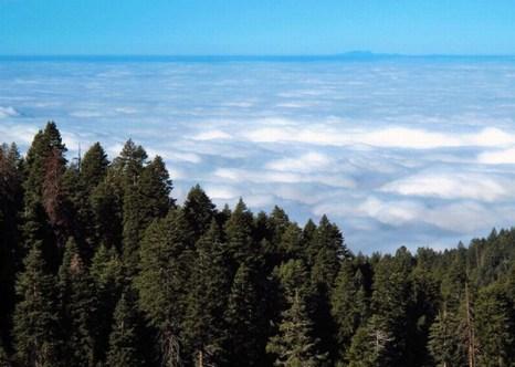 Выше облаков. Фото:xaxor.com