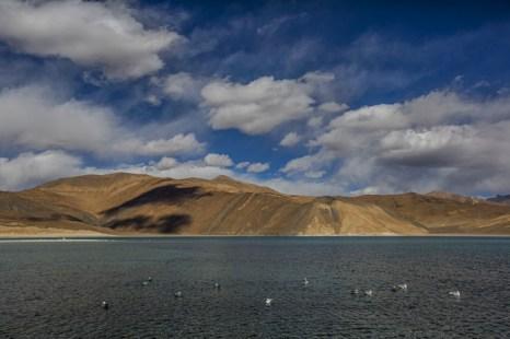 Озеро Пангонг-Цо в Ладаке. Фото: Daniel Berehulak/Getty Images
