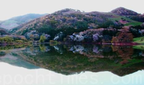 Южная Корея: весенние пейзажи. Фото: Цюань Юй/Великая Эпоха (The Epoch Times)