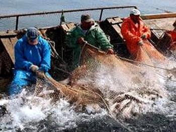 Рыбаки Чукотки требуют пересмотра условий прибрежного рыболовства. Фото: vostokmedia.com