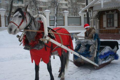 Лошадка Деда Мороза. Фото: Оксана Торбеева/Великая Эпоха (The Epoch Times)