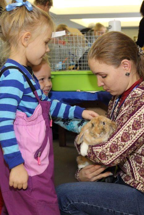 Выставка «Белые и пушистые» в Новосибирске. Погладить кролика. Фото: Сергей Кузьмин/Великая Эпоха (The Epoch Times)