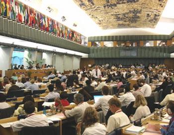 Допустимые нормы содержания меламина в жидких молочных смесях и сушеном инжире, а также правила продажи арбузов установила ООН. Фото:newmediaexplorer.org