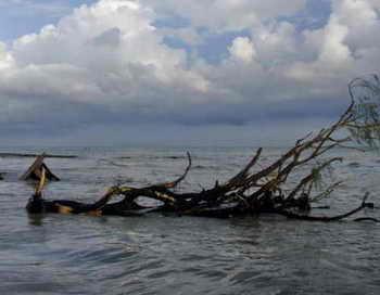 В районе Курильских островов утонули 10 пограничников ФСБ. Фото: Getty Images