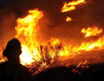 Сотни пожарных борются с лесными пожарами в Лос-Анджелесе. Фото: ROBYN BECK/AFP/Getty Images